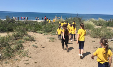 Fieldtrips and Educational-Themed Excursions